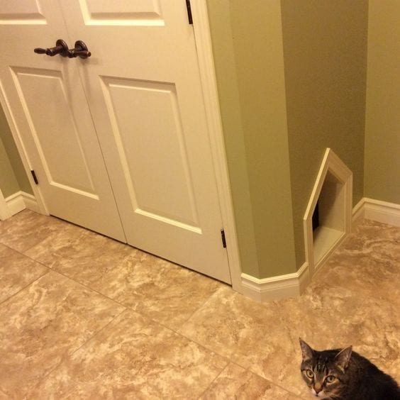Home Improvement Tips & Tricks: Pet Problems, Solved!